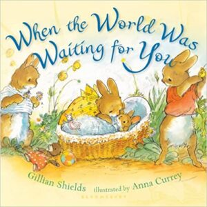 when-the-world-waswaiting-for-you-baby-book