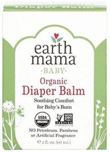 Earth-mama-diaper-rash-cream