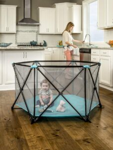 Regalo My Portable Play Yard Indoor and Outdoor