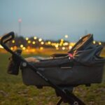 Best Sit and Stand Stroller of 2021