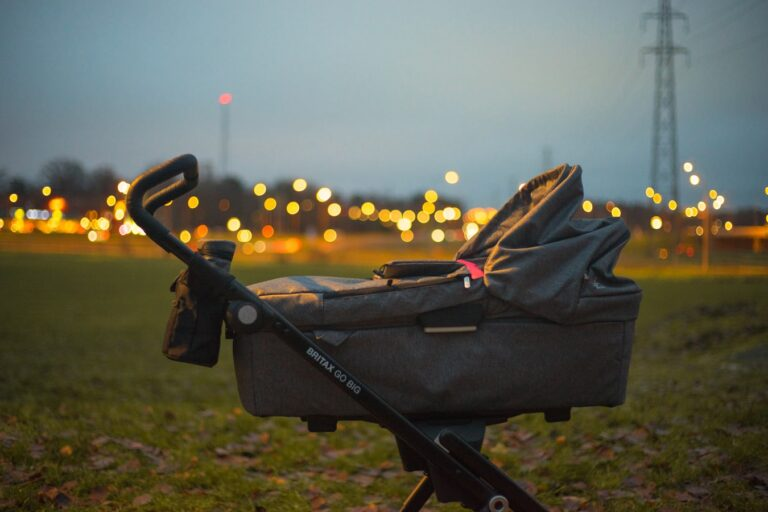 Read more about the article Best Sit and Stand Stroller of 2021