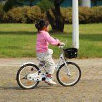 Best Kid Bike Basket of 2021