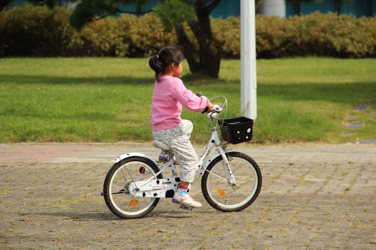 Read more about the article Best Kid Bike Basket of 2021